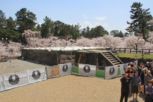弘前桜祭り2016(1)-12