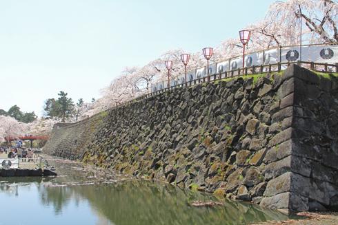 弘前桜祭り2016(2)-2