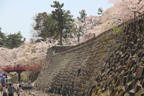 弘前桜祭り2016(2)-3