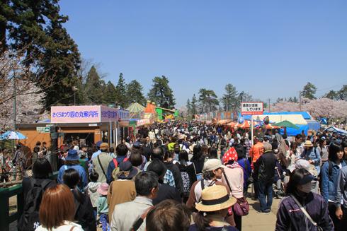 弘前桜祭り2016(2)-6