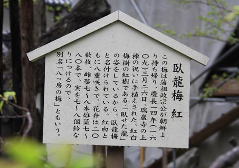 リニューアル瑞巌寺-14