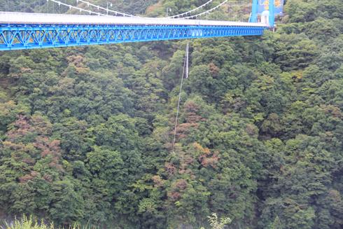 竜神大吊橋2016-8