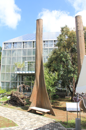 筑波実験植物園2016(1)-15