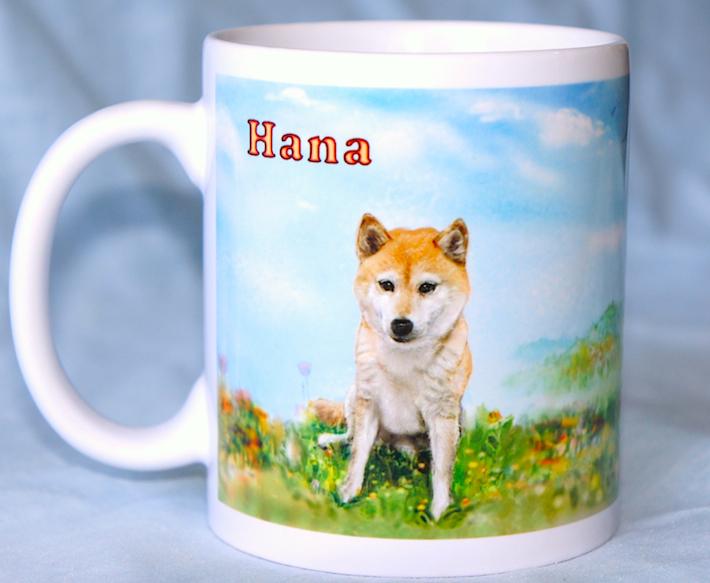 柴犬マグ09054---__