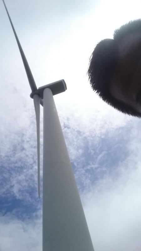 01風車160625