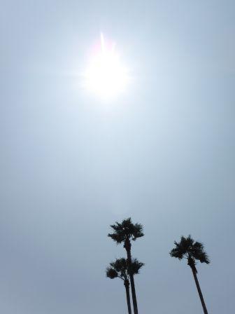 1 サンビーチ日光川5-1