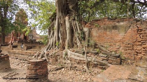 Wat Phra Mahathat,Auytthaya,Thailand
