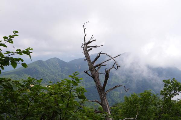 釈迦ヶ岳45