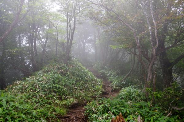 釈迦ヶ岳49