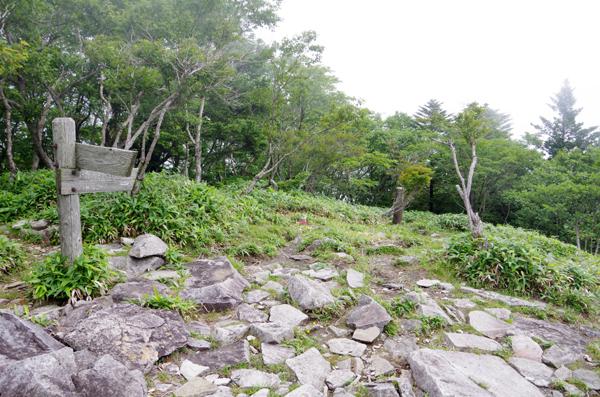 釈迦ヶ岳53