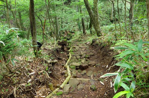 釈迦ヶ岳54