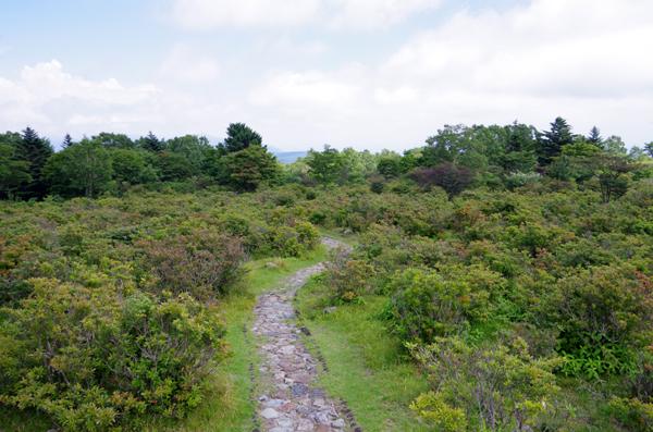 釈迦ヶ岳61