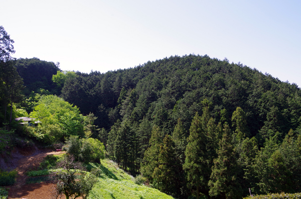 日和田山29