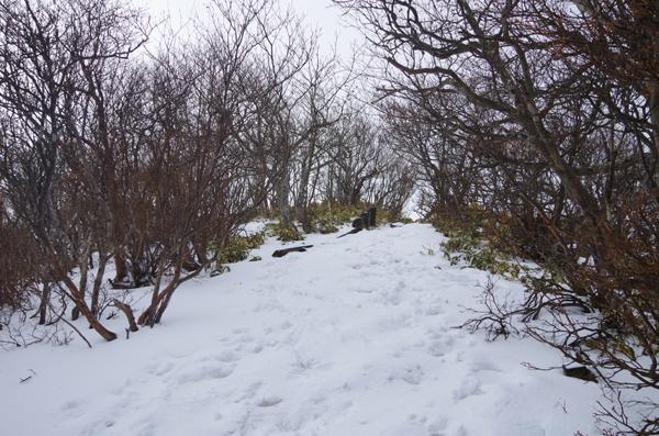 黒檜山33