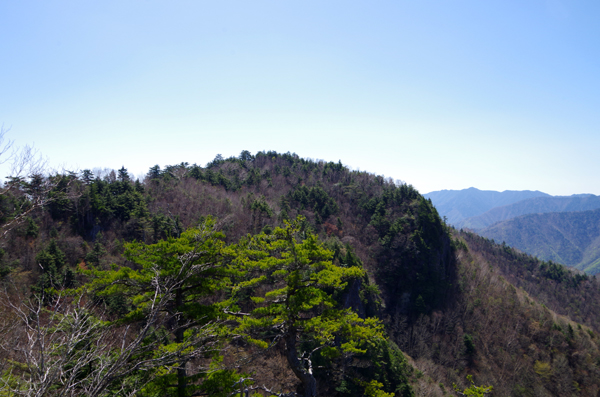 三宝山29
