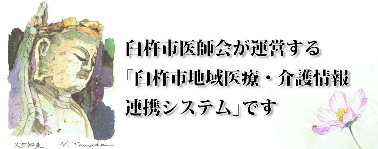 臼杵石仏ネット