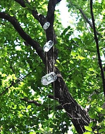 吊るし型トラップ