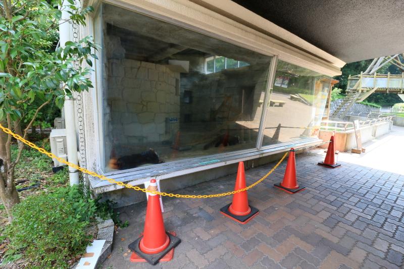 レッサーパンダ舎・屋内展示場(2016年8月20日撮影)