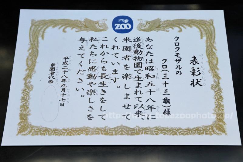 クロクモザルのクロちゃんへ表彰状! (とべ動物園・敬老イベント)