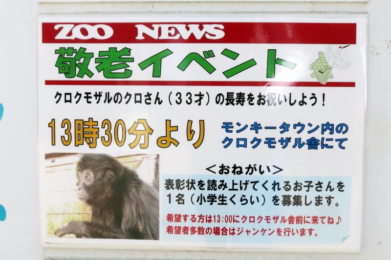 とべ動物園 ZOO NEWS 敬老イベントの案内版です。