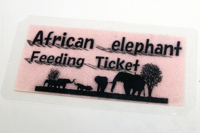 夜の動物園にてゾウさんのイベント、参加専用チケット