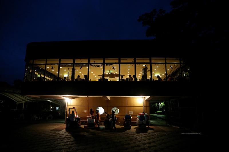 夜の展望レストラン東雲と遊具(東側)