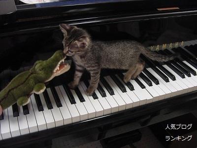 金曜日のピアノレッスン2