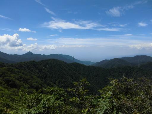 清八山より