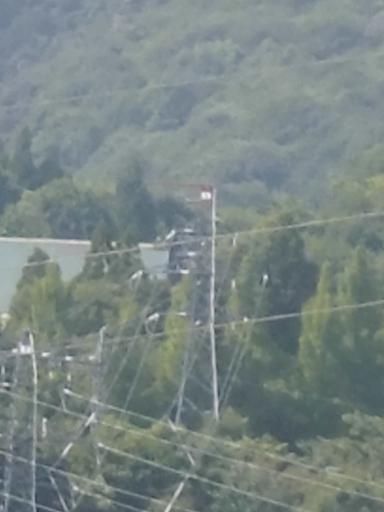 磐梯リゾート線8号