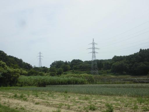 日和田線20号