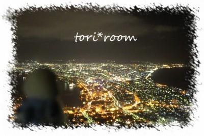 函館夜景*ハノリン