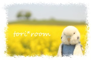 菜の花畑*ハノリン