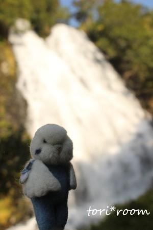 オシンコシンの滝*ハノリン