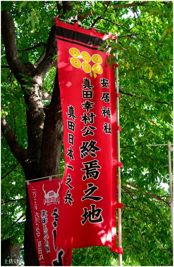 安居神社5