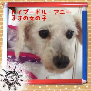 fc2blog_201604201959540b6.jpg