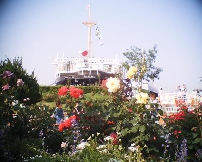 氷川丸とバラ・港の見える丘公園:R2