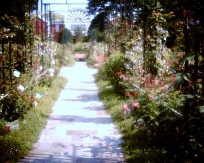 沈床花壇・港の見える丘公園
