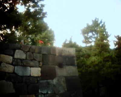 石垣の上の彼岸花・皇居東御苑:Entry