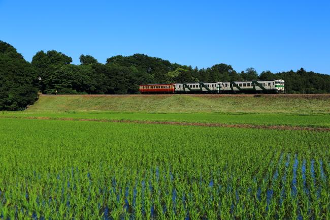 鉄道写真0040