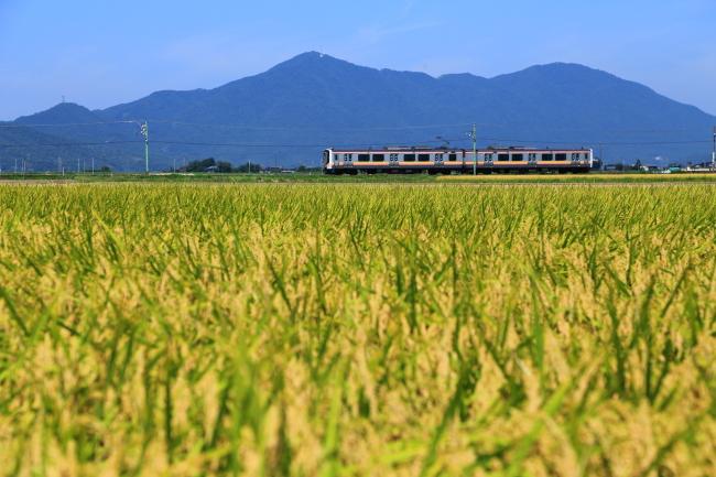 鉄道写真0666