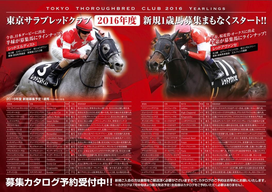 2016東サラ募集馬リスト