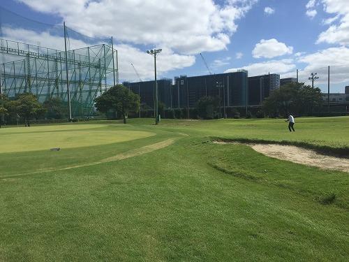 golf11-01.jpg