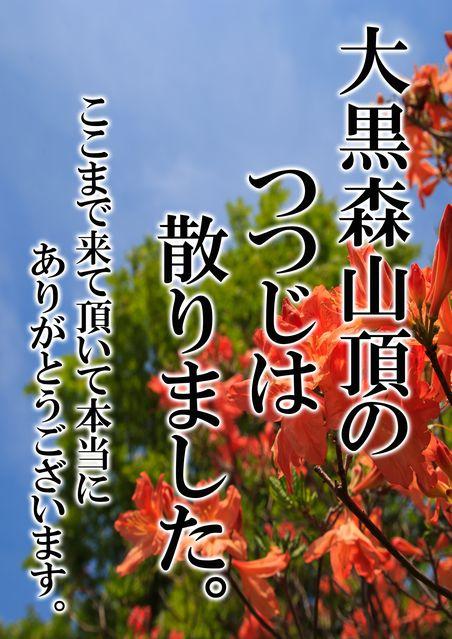 田子町地域おこし協力隊つっちーブログ20160614_005