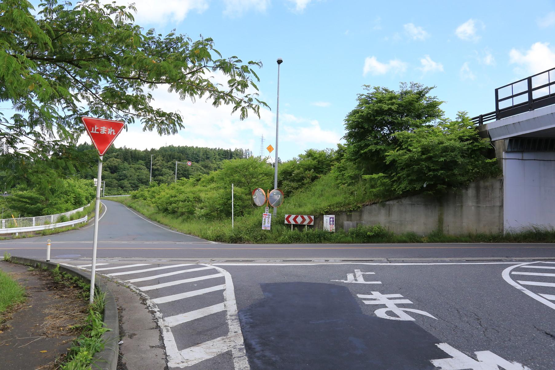 田子町地域おこし協力隊つっちーブログ20160617_001