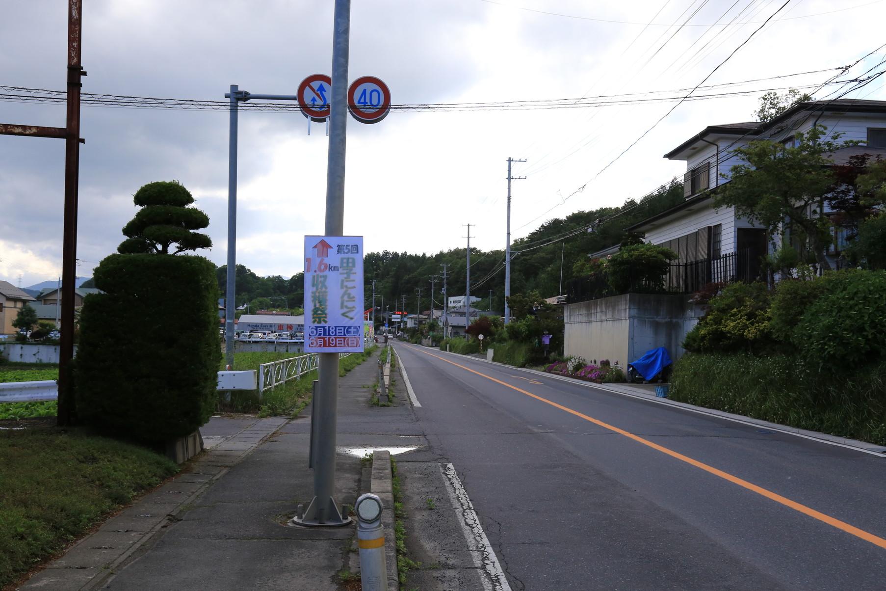 田子町地域おこし協力隊つっちーブログ20160617_004
