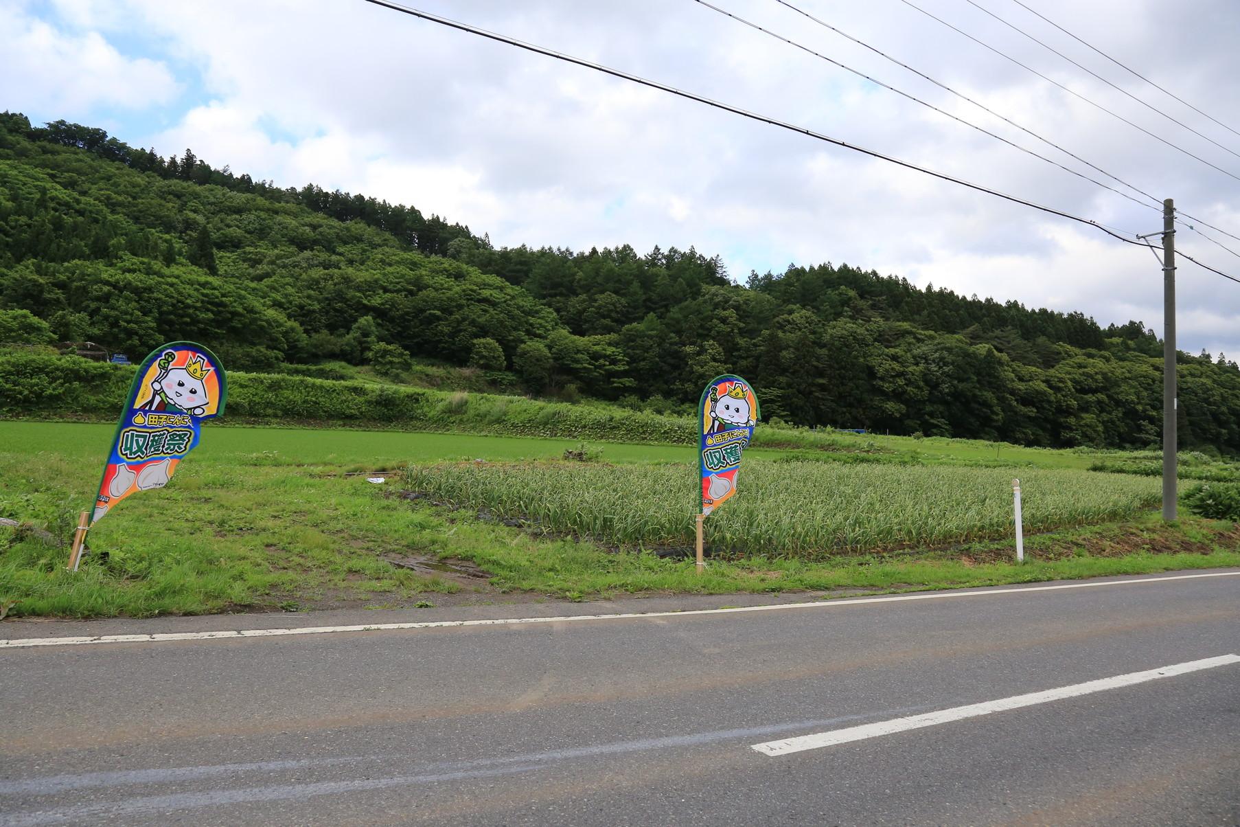 田子町地域おこし協力隊つっちーブログ20160617_015