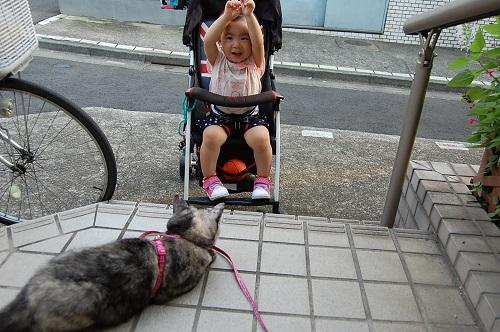 あさりちゃんと赤ちゃん01