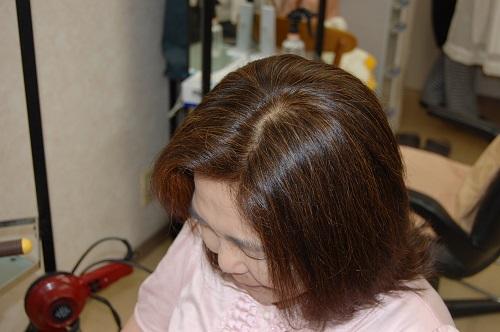 ヘナスーパーファイン白髪染06