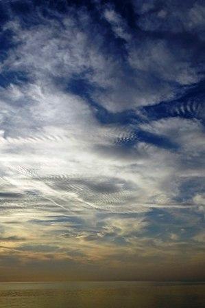 縞雲5-26-19-02 DSC06616