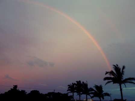 虹A DSC05163